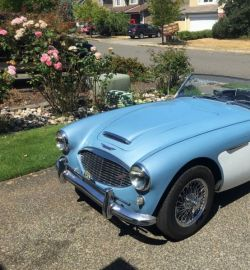 AUSTIN HEALEY (GB) 3000 BN7/BT7